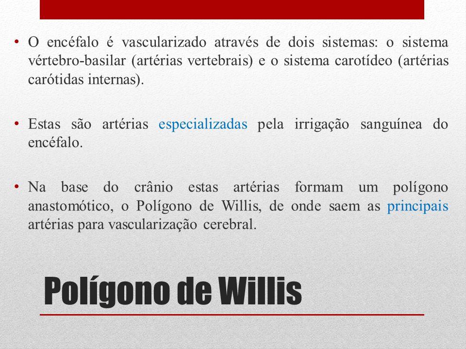 Polígono de Willis O encéfalo é vascularizado através de dois sistemas: o sistema vértebro-basilar (artérias vertebrais) e o sistema carotídeo (artéri