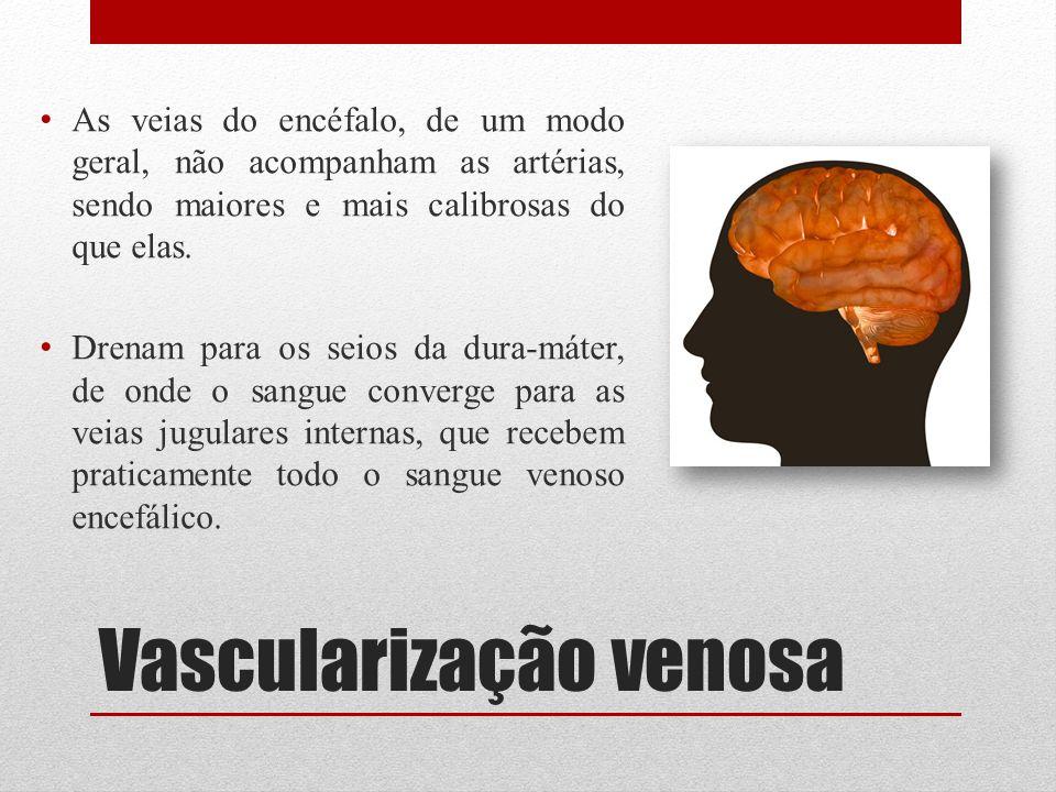 Vascularização venosa As veias do encéfalo, de um modo geral, não acompanham as artérias, sendo maiores e mais calibrosas do que elas. Drenam para os