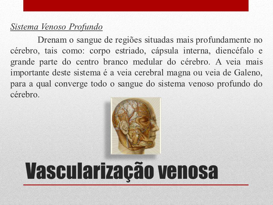 Vascularização venosa Sistema Venoso Profundo Drenam o sangue de regiões situadas mais profundamente no cérebro, tais como: corpo estriado, cápsula in