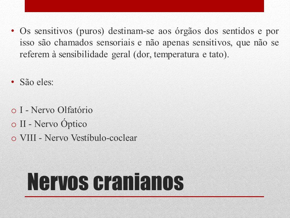 Nervos cranianos Os sensitivos (puros) destinam-se aos órgãos dos sentidos e por isso são chamados sensoriais e não apenas sensitivos, que não se refe