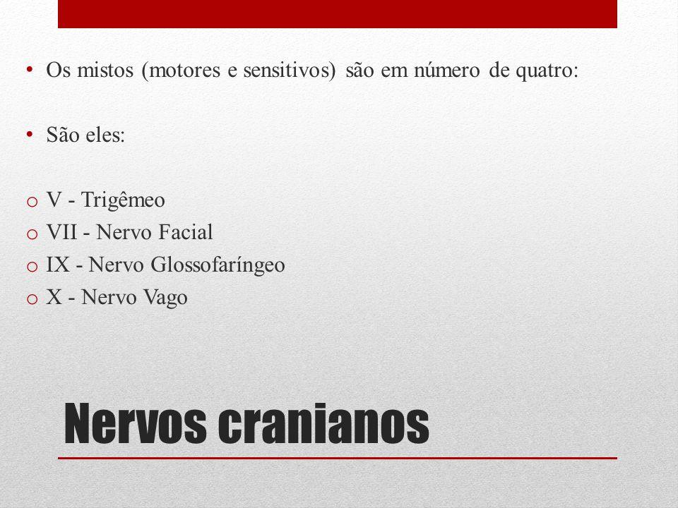 Nervos cranianos Os mistos (motores e sensitivos) são em número de quatro: São eles: o V - Trigêmeo o VII - Nervo Facial o IX - Nervo Glossofaríngeo o