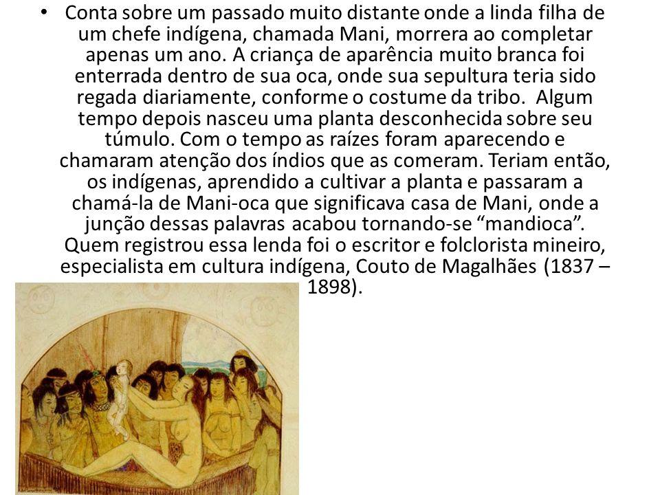 Por sua provável origem, a mandioca caracteriza-se por ser um produto brasileiro e tem relevante importância na cultura e alimentação brasileira.