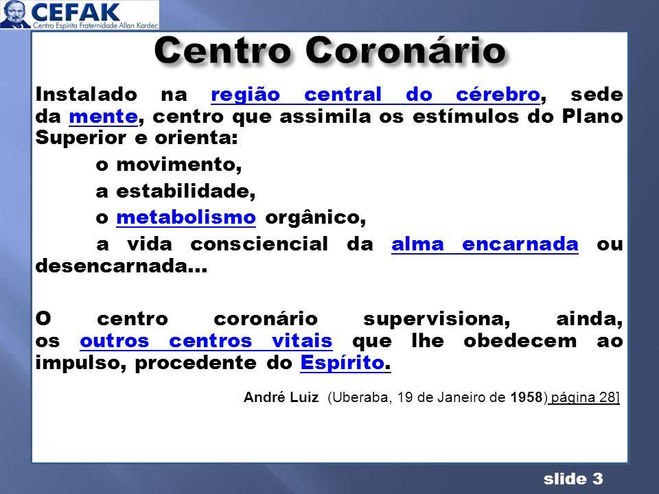 slide 14 PLEXOLOCALIZAÇÃO CENTRO DE FORÇA NATUREZA/ ATIVIDADE -------------------------Alto da cabeçaCORONÁRIOEspiritual FRONTALFronteFRONTALEspiritual HIPOGÁSTRICOBaixo ventreGENÉSICOFisiológico MESENTÉRICORegião do baçoESPLÊNICO SOLAR Região do estômago GÁSTRICOFisiológico CARDÍACORegião precordialCARDÍACOEmocional LARÍNGEOGargantaLARÍNGEOEmocional SACRALBase da espinhaBÁSICO