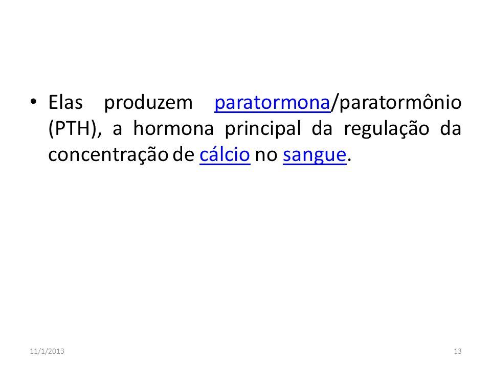 Elas produzem paratormona/paratormônio (PTH), a hormona principal da regulação da concentração de cálcio no sangue.paratormonacálciosangue 11/1/201313