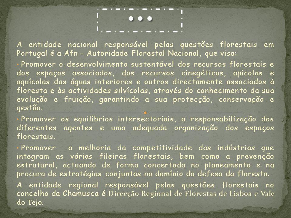 A entidade nacional responsável pelas questões florestais em Portugal é a Afn - Autoridade Florestal Nacional, que visa: Promover o desenvolvimento su