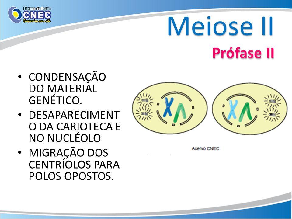 Meiose II Prófase II CONDENSAÇÃO DO MATERIAL GENÉTICO. DESAPARECIMENT O DA CARIOTECA E NO NUCLÉOLO MIGRAÇÃO DOS CENTRÍOLOS PARA POLOS OPOSTOS.