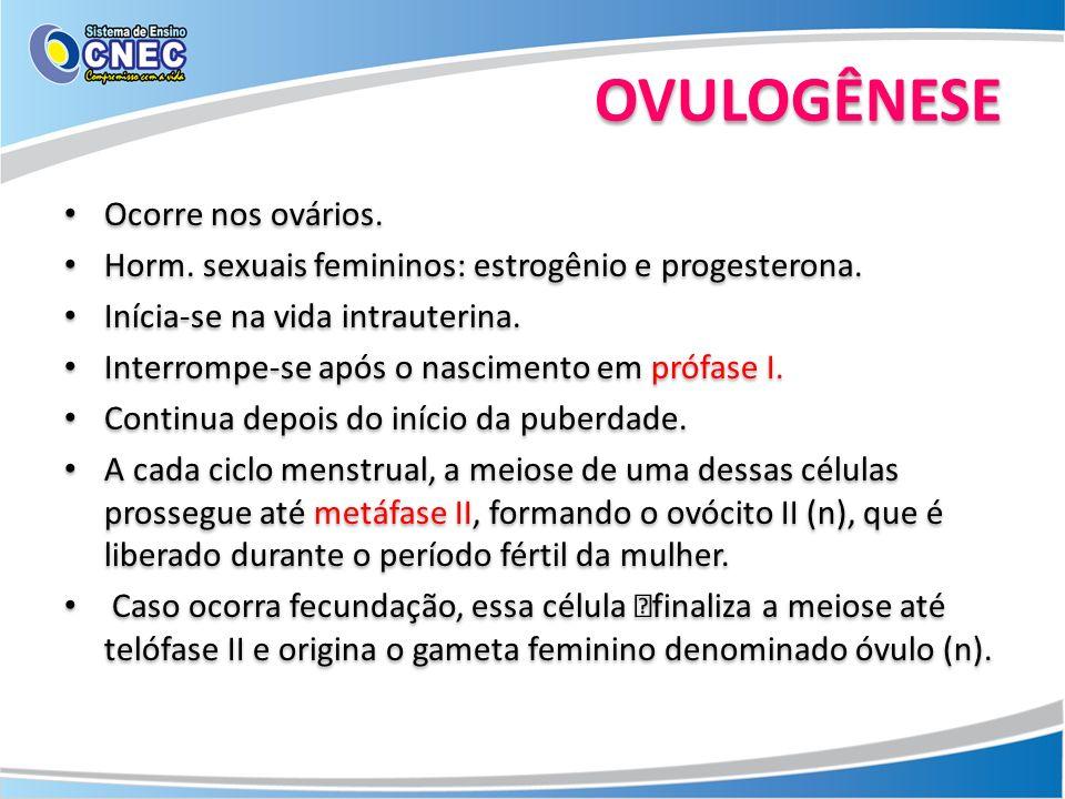 OVULOGÊNESE Ocorre nos ovários. Horm. sexuais femininos: estrogênio e progesterona. Inícia-se na vida intrauterina. Interrompe-se após o nascimento em