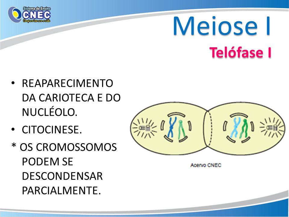 Meiose I Telófase I REAPARECIMENTO DA CARIOTECA E DO NUCLÉOLO. CITOCINESE. * OS CROMOSSOMOS PODEM SE DESCONDENSAR PARCIALMENTE.