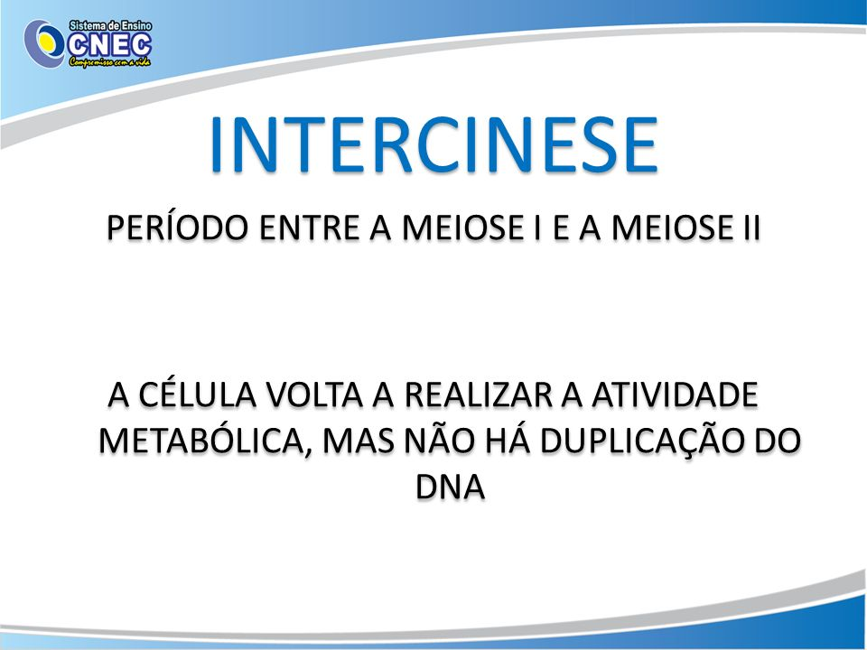 INTERCINESE PERÍODO ENTRE A MEIOSE I E A MEIOSE II A CÉLULA VOLTA A REALIZAR A ATIVIDADE METABÓLICA, MAS NÃO HÁ DUPLICAÇÃO DO DNA INTERCINESE PERÍODO