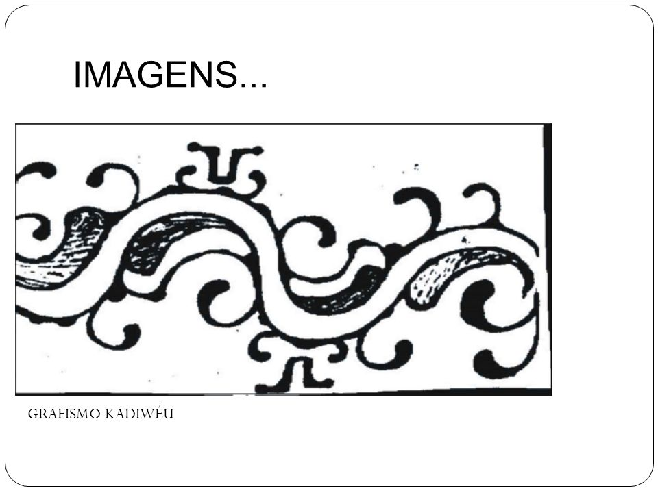 IMAGENS... GRAFISMO KADIWÉU