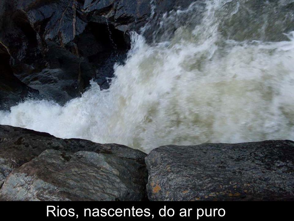 Cachoeiras lindas em que pude nadar