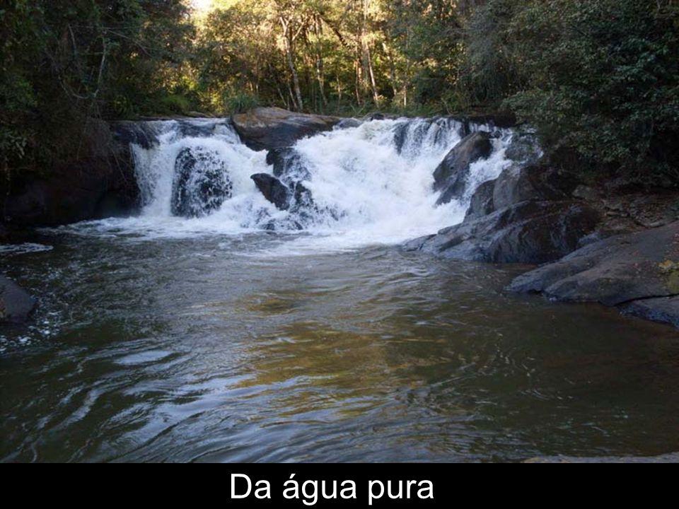 Lute pelas cachoeiras do limoeiro e contra as usinas em Socorro - SP e Bueno Brandão-MG