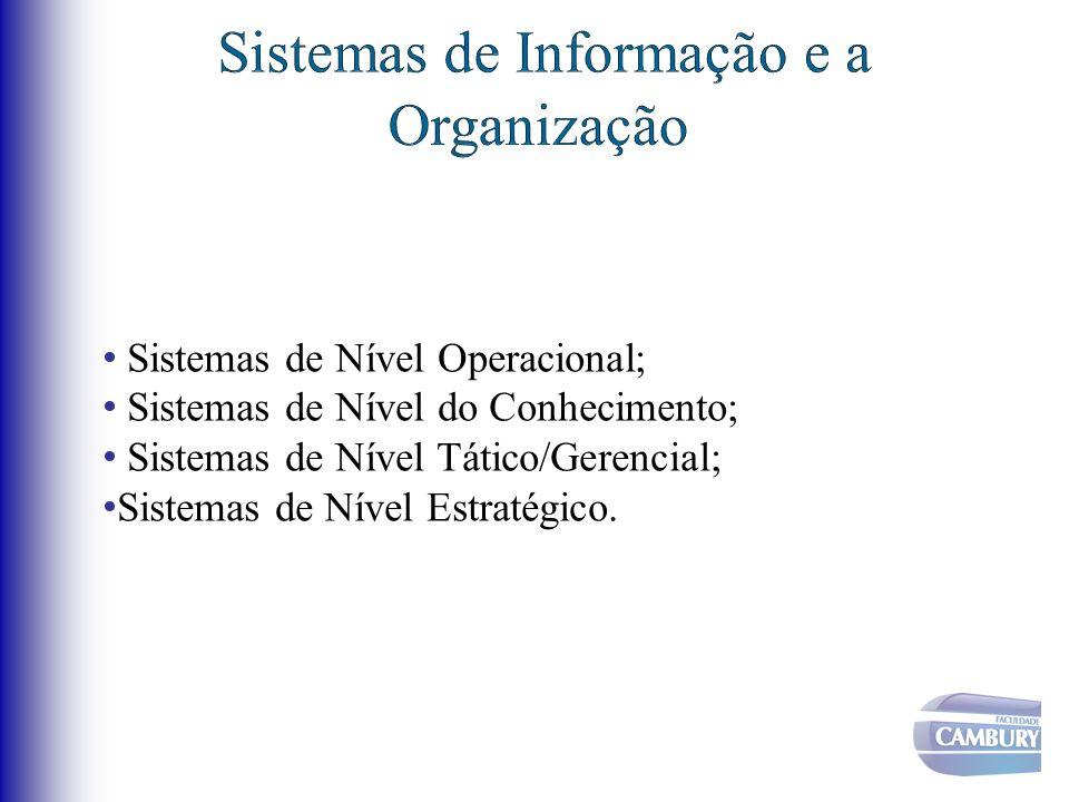 Sistemas de Nível Operacional; Sistemas de Nível do Conhecimento; Sistemas de Nível Tático/Gerencial; Sistemas de Nível Estratégico.