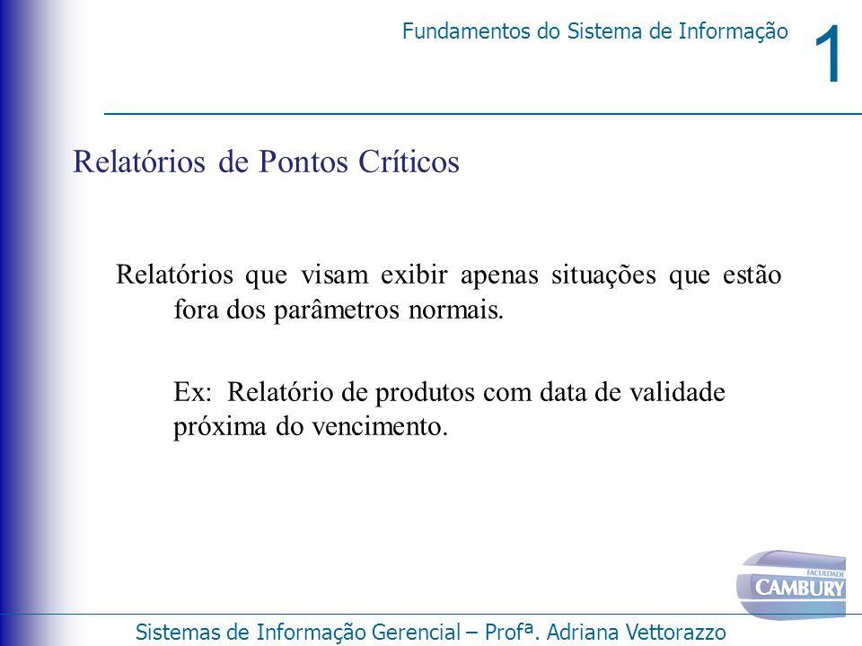 1 Fundamentos do Sistema de Informação Sistemas de Informação Gerencial – Profª. Adriana Vettorazzo Relatórios de Pontos Críticos Relatórios que visam