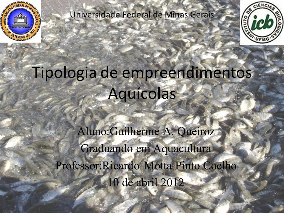 Universidade Federal de Minas Gerais Tipologia de empreendimentos Aquícolas Aluno:Guilherme A.