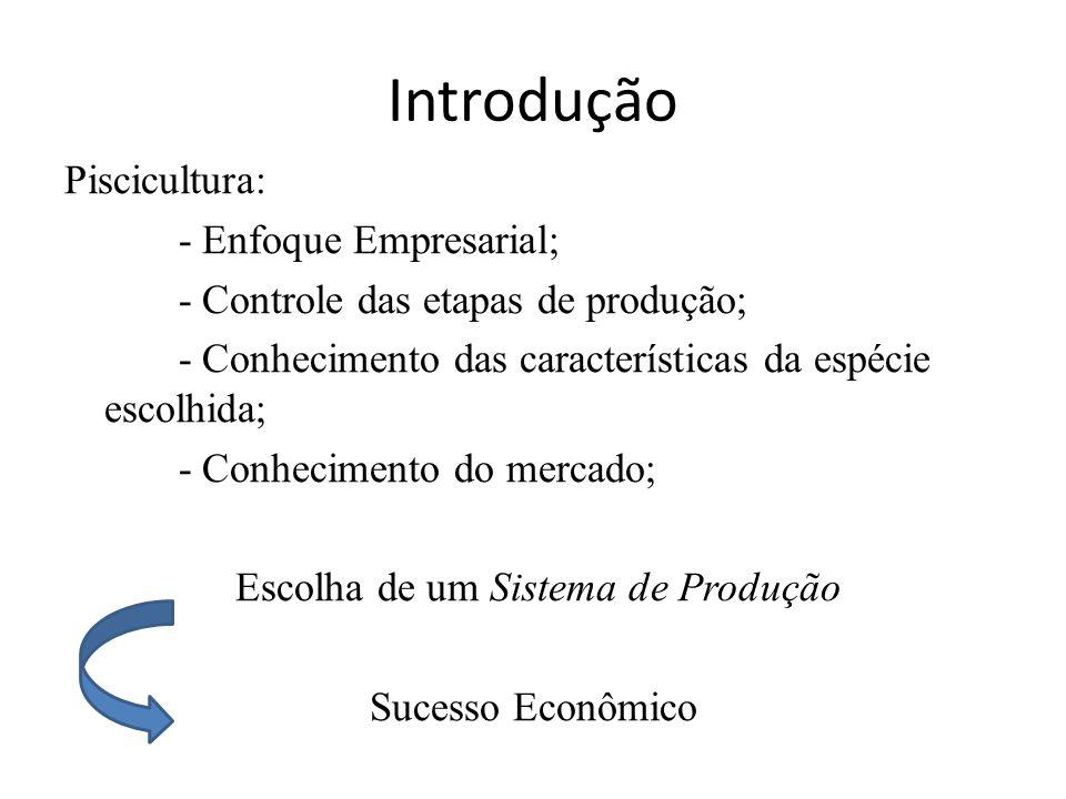 Introdução Piscicultura: - Enfoque Empresarial; - Controle das etapas de produção; - Conhecimento das características da espécie escolhida; - Conhecimento do mercado; Escolha de um Sistema de Produção Sucesso Econômico