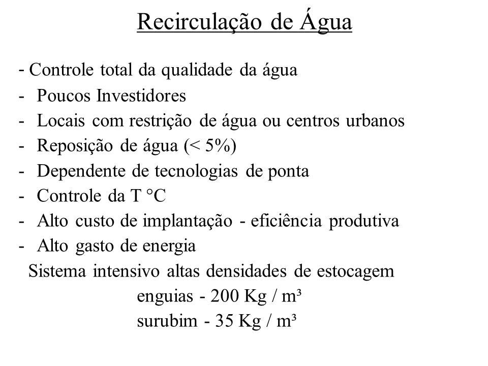 Recirculação de Água - Controle total da qualidade da água -Poucos Investidores -Locais com restrição de água ou centros urbanos -Reposição de água (< 5%) -Dependente de tecnologias de ponta -Controle da T °C -Alto custo de implantação - eficiência produtiva -Alto gasto de energia Sistema intensivo altas densidades de estocagem enguias - 200 Kg / m³ surubim - 35 Kg / m³