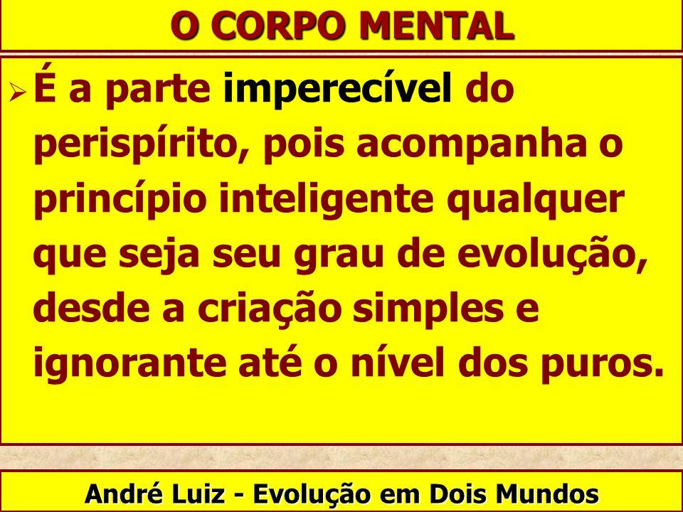 É a parte imperecível do perispírito, pois acompanha o princípio inteligente qualquer que seja seu grau de evolução, desde a criação simples e ignoran