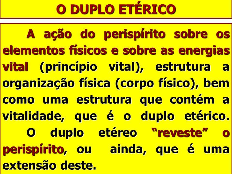O DUPLO ETÉRICO A ação do perispírito sobre os elementos físicos e sobre as energias vital (princípio vital), estrutura a organização física (corpo fí