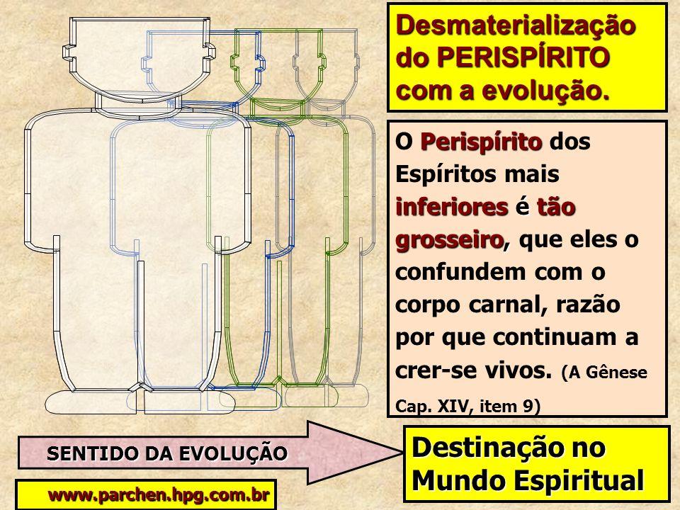 SENTIDO DA EVOLUÇÃO www.parchen.hpg.com.br Desmaterialização do PERISPÍRITO com a evolução. Perispírito inferioresé tão grosseiro, O Perispírito dos E