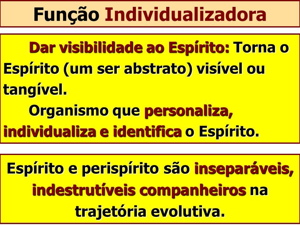 Função Individualizadora Dar visibilidade ao Espírito: Torna o Espírito (um ser abstrato) visível ou tangível. Organismo que personaliza, individualiz