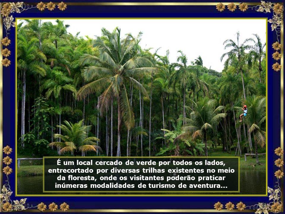Esse inédito projeto está instalado numa área de ecossistema da Mata Atlântica com 66 hectares, doada pelo empresário Norberto Odebrecht...