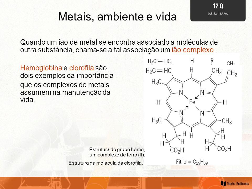 Metais, ambiente e vida Estrutura da molécula de clorofila. Hemoglobina e clorofila são dois exemplos da importância que os complexos de metais assume