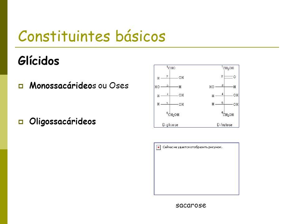 Constituintes básicos Glícidos Monossacárideos ou Oses Oligossacárideos sacarose