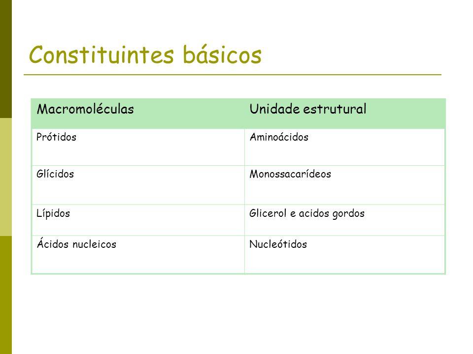 Constituintes básicos MacromoléculasUnidade estrutural PrótidosAminoácidos GlícidosMonossacarídeos LípidosGlicerol e acidos gordos Ácidos nucleicosNuc
