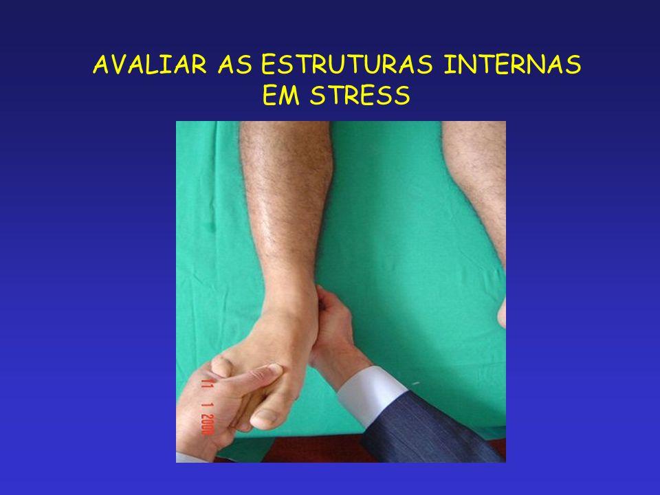 AVALIAR AS ESTRUTURAS INTERNAS EM STRESS