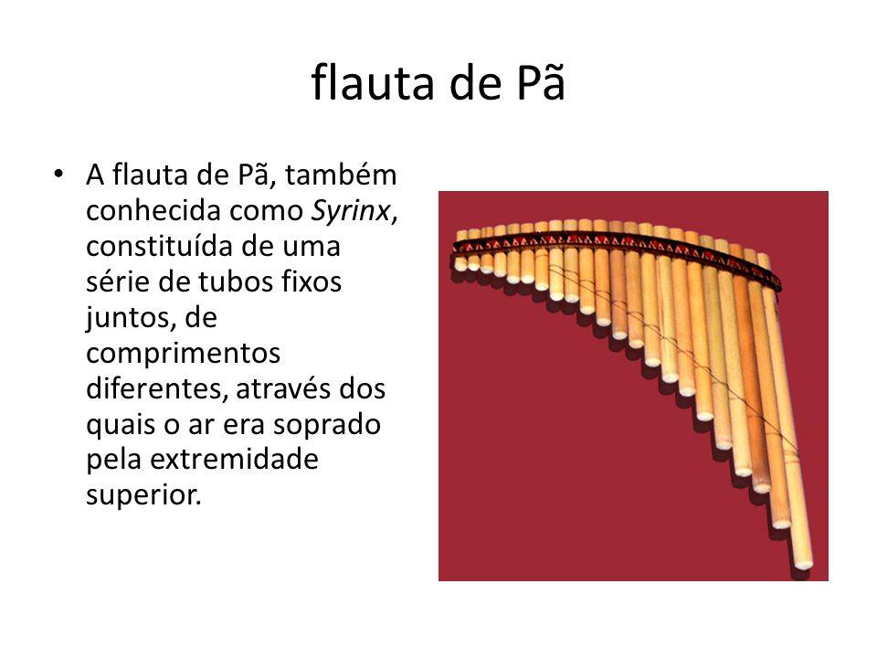 flauta de Pã A flauta de Pã, também conhecida como Syrinx, constituída de uma série de tubos fixos juntos, de comprimentos diferentes, através dos qua