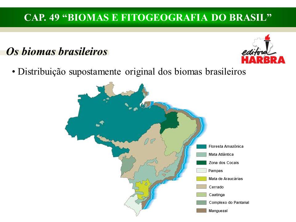 CAP. 49 BIOMAS E FITOGEOGRAFIA DO BRASIL Os biomas brasileiros Distribuição supostamente original dos biomas brasileiros Mata de Araucárias Cerrado Ca