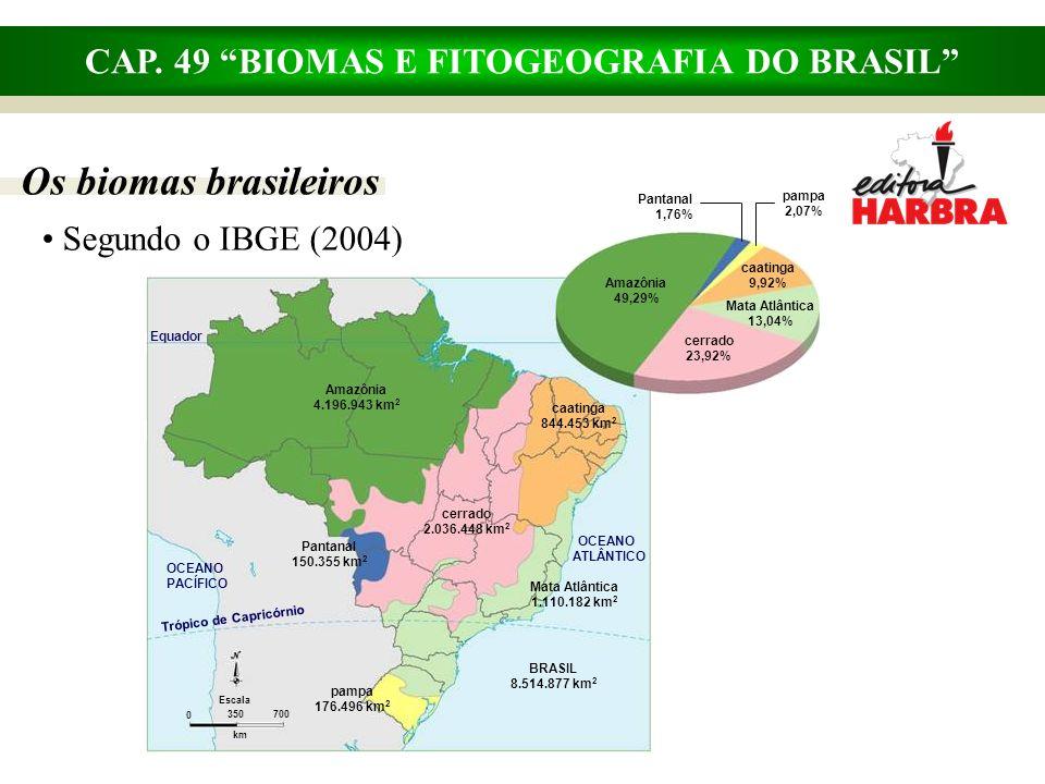 CAP. 49 BIOMAS E FITOGEOGRAFIA DO BRASIL Os biomas brasileiros Segundo o IBGE (2004) Mata Atlântica 1.110.182 km 2 pampa 176.496 km 2 BRASIL 8.514.877