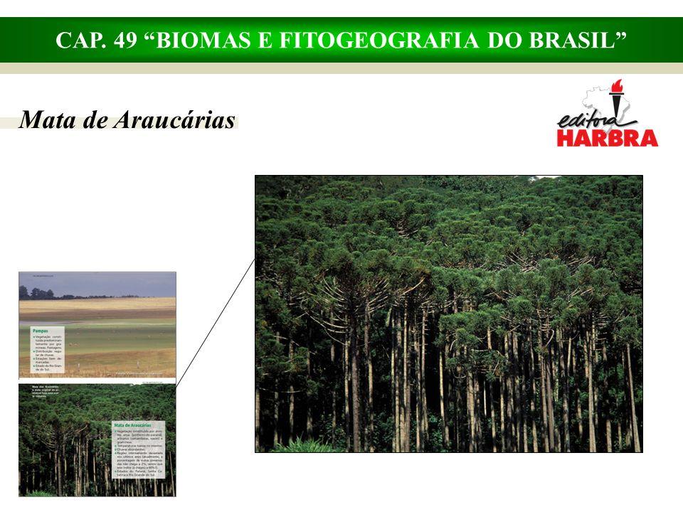 CAP. 49 BIOMAS E FITOGEOGRAFIA DO BRASIL Complexo do Pantanal
