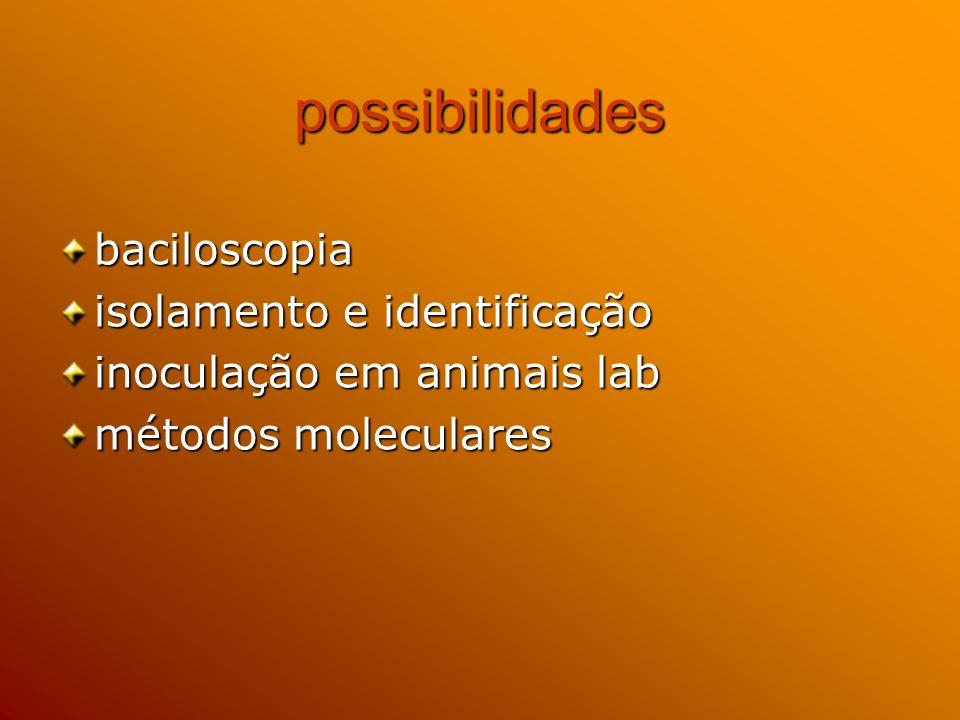 diagnóstico direto da tuberculose bovina Mycobacterium bovis