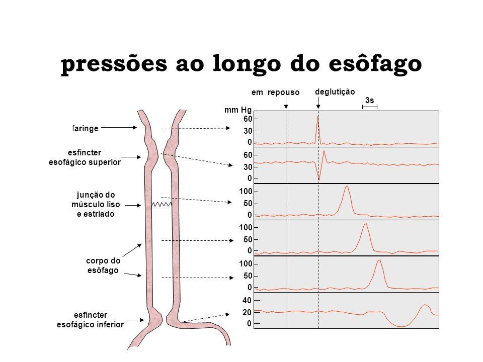 pressões ao longo do esôfago esfíncter esofágico superior junção do músculo liso e estriado esfíncter esofágico inferior 3s em repouso deglutição mm H