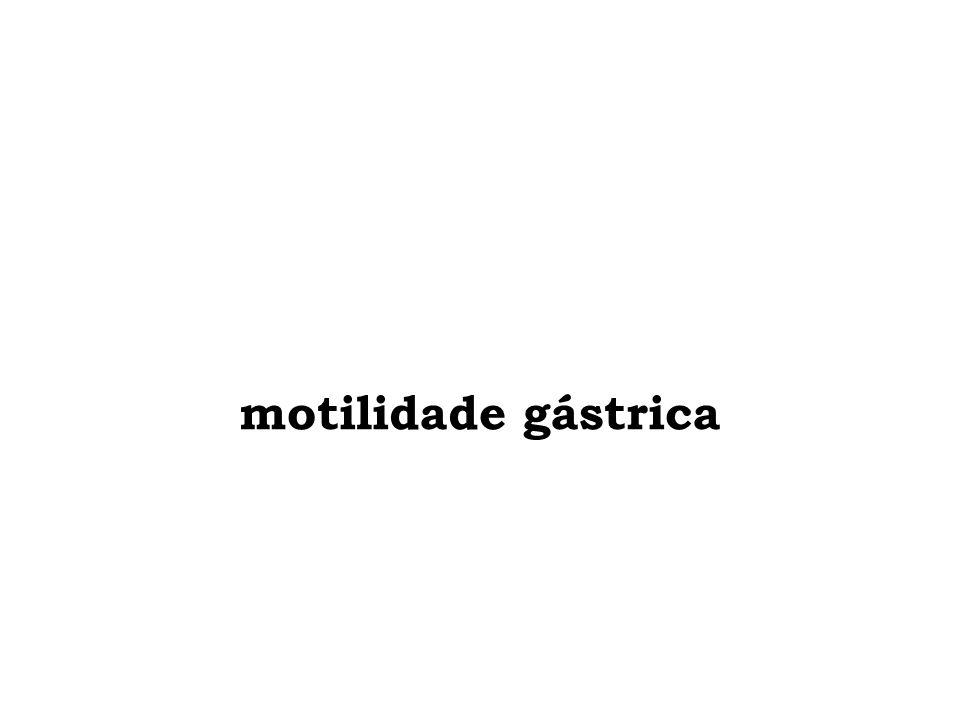 motilidade gástrica