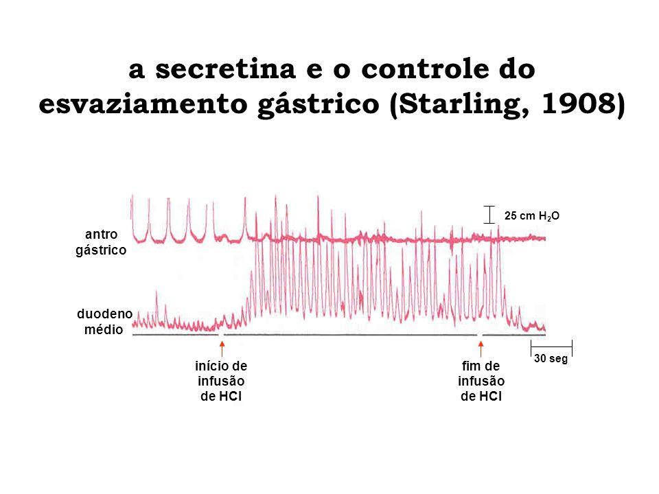 a secretina e o controle do esvaziamento gástrico (Starling, 1908) início de infusão de HCl fim de infusão de HCl 30 seg 25 cm H 2 O antro gástrico du