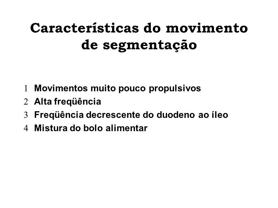 Características do movimento de segmentação Movimentos muito pouco propulsivos Alta freqüência Freqüência decrescente do duodeno ao íleo Mistura do bo