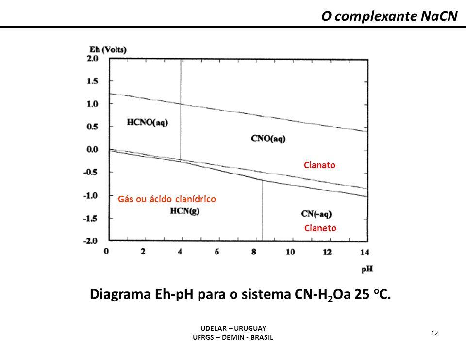 O complexante NaCN UDELAR – URUGUAY UFRGS – DEMIN - BRASIL 12 Cianato Cianeto Gás ou ácido cianídrico Diagrama Eh-pH para o sistema CN-H 2 Oa 25 o C.