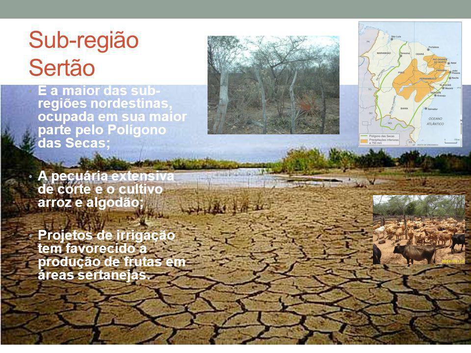 Sub-região Sertão É a maior das sub- regiões nordestinas, ocupada em sua maior parte pelo Polígono das Secas; A pecuária extensiva de corte e o cultiv