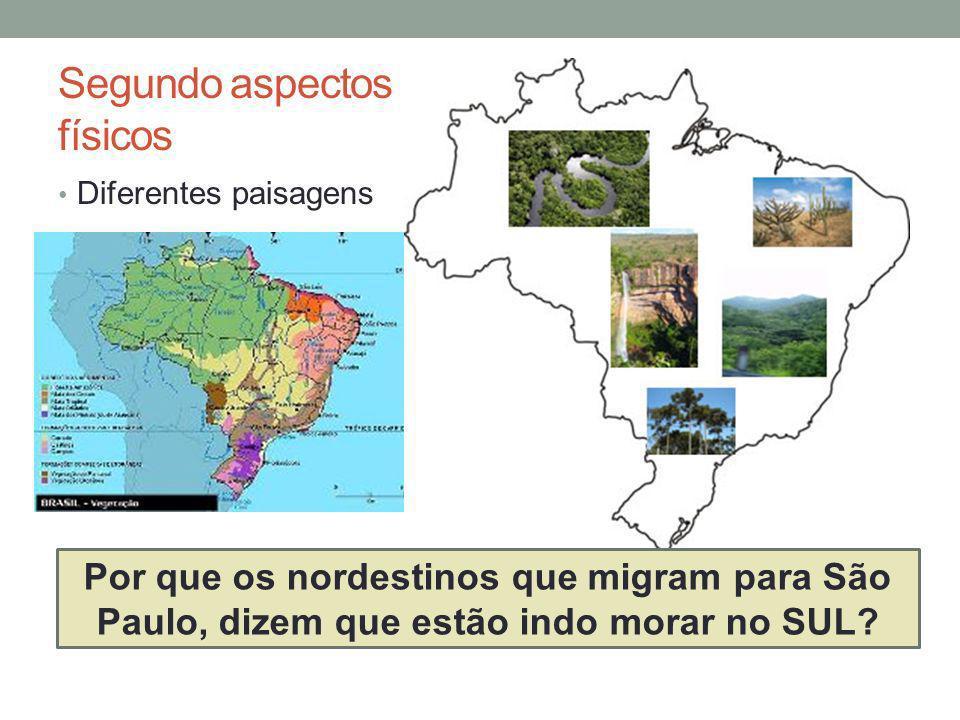 Segundo aspectos físicos Diferentes paisagens Por que os nordestinos que migram para São Paulo, dizem que estão indo morar no SUL?