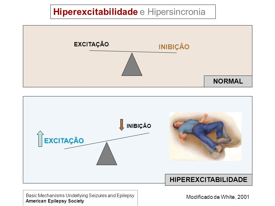 EXCITAÇÃO INIBIÇÃO EXCITAÇÃO NORMAL HIPEREXCITABILIDADE Hiperexcitabilidade e Hipersincronia Modificado de White, 2001 Basic Mechanisms Underlying Sei