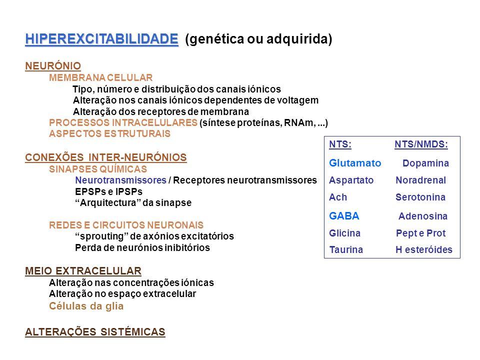 HIPEREXCITABILIDADE HIPEREXCITABILIDADE (genética ou adquirida) NEURÓNIO MEMBRANA CELULAR Tipo, número e distribuição dos canais iónicos Alteração nos canais iónicos dependentes de voltagem Alteração dos receptores de membrana PROCESSOS INTRACELULARES (síntese proteínas, RNAm,...) ASPECTOS ESTRUTURAIS CONEXÕES INTER-NEURÓNIOS SINAPSES QUÍMICAS Neurotransmissores / Receptores neurotransmissores EPSPs e IPSPs Arquitectura da sinapse REDES E CIRCUITOS NEURONAIS sprouting de axónios excitatórios Perda de neurónios inibitórios MEIO EXTRACELULAR Alteração nas concentrações iónicas Alteração no espaço extracelular Células da glia ALTERAÇÕES SISTÉMICAS NTS: NTS/NMDS: Glutamato Dopamina Aspartato Noradrenal Ach Serotonina GABA Adenosina Glicina Pept e Prot Taurina H esteróides