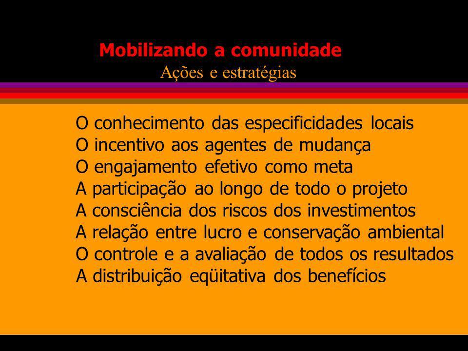 Mobilizando a comunidade O conhecimento das especificidades locais O incentivo aos agentes de mudança O engajamento efetivo como meta A participação a