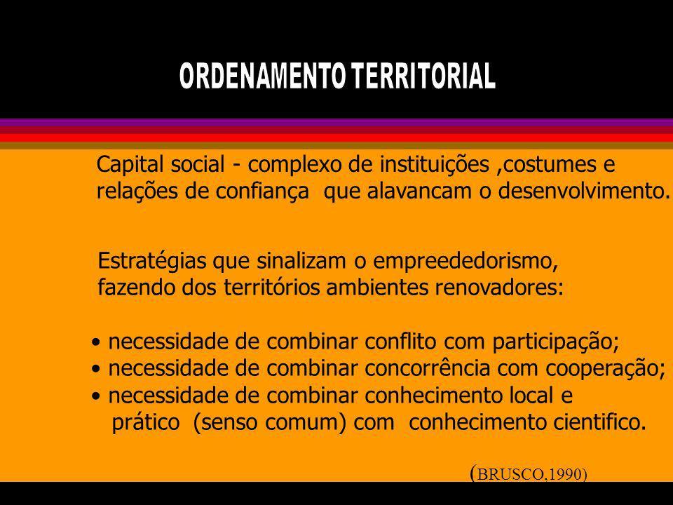 Capital social - complexo de instituições,costumes e relações de confiança que alavancam o desenvolvimento. Estratégias que sinalizam o empreededorism