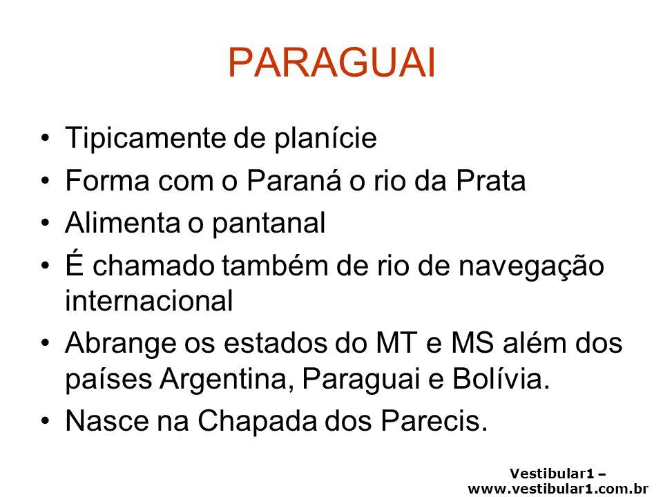 Vestibular1 – www.vestibular1.com.br PARAGUAI Tipicamente de planície Forma com o Paraná o rio da Prata Alimenta o pantanal É chamado também de rio de