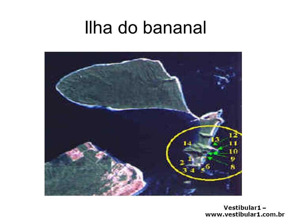 Vestibular1 – www.vestibular1.com.br Ilha do bananal