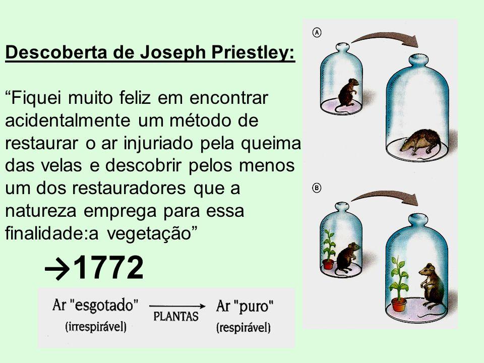 Descoberta de Joseph Priestley: Fiquei muito feliz em encontrar acidentalmente um método de restaurar o ar injuriado pela queima das velas e descobrir