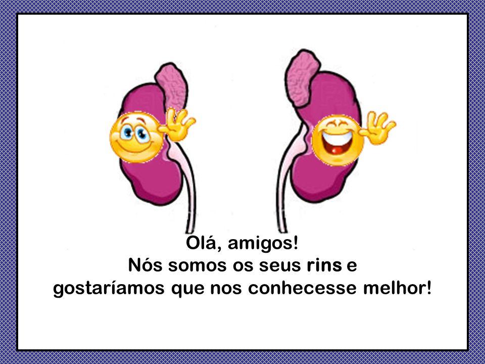 É essencial que aprenda a manter-nos saudáveis, porque o funcionamento de todos os órgãos do seu corpo, depende de nós!